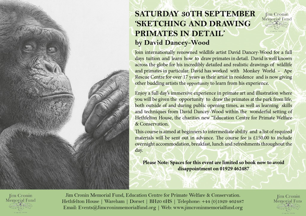 11-primate-art-class-with-david-dancey-wood