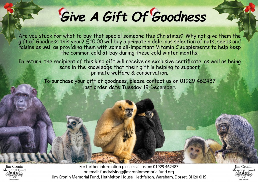 give a gift of goodness final 2