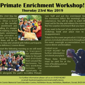 enrichment workshop 23rd May 2019