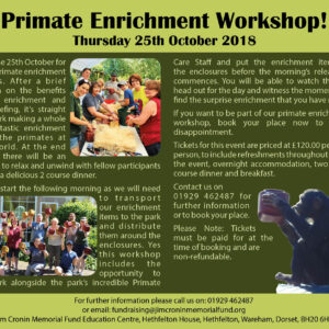 enrichment workshop 25th Oct