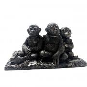 3 chimp front
